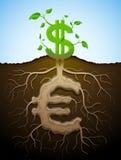 Det växande dollartecknet som växten med sidor och euro som rotar Arkivbilder