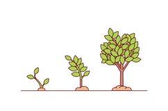 Det växande trädet kärnar ur med gröna blad royaltyfri illustrationer