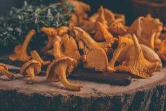 Det vide- magasinet med kantarellen plocka svamp på trätabellen Baktala, korgen med champinjoner och nya örter royaltyfri bild