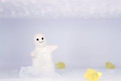 Det vita lilliputianleendet i snön och isen Royaltyfria Foton