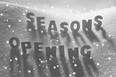 Det vita ordet kryddar öppning på snö, snöflingor Arkivbilder