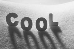 Det vita ordet kyler på snö Arkivfoto