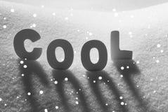 Det vita ordet kyler på snö, snöflingor Arkivbilder