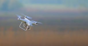 Det vita surret flyger oavkortad hastighet royaltyfri fotografi