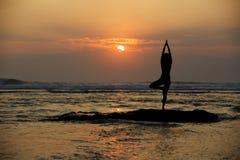 Det Vrikshasana trädet poserar från yoga Arkivbilder