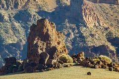 Det vulkaniska landskapet av Tenerife med torr lava vaggar i f?rgrund kanarief?gel?ar spain Teide nationalpark royaltyfria bilder