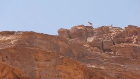 Det Wadi Rum Ibex anseendet vaggar på klippan stock video