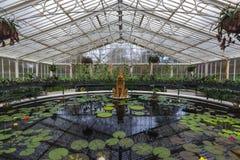 Det Waterlily huset på Kew trädgårdar Arkivfoton