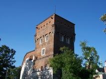 Det Wawel slottet står hög Royaltyfri Foto