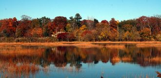 Det Welwyn syltlänet parkerar En härlig naturreserv i Glen Cove Long Island New Youk fotografering för bildbyråer