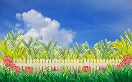 Det Wood staket och blomman i utgångspunkt arbeta i trädgården med den blåa skyen arkivbild