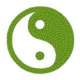 Det Ying Yang tecknet som göras av kryddnejlikan för fyra Leaf Arkivbild