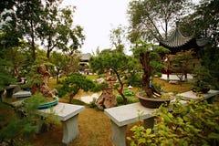 Det Zhengzhou Zijing berget parkerar arkivbilder