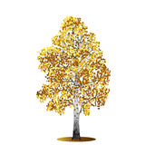 Detached tree birch with yellow leaves Stock Photo