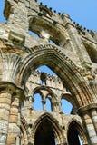 Detail über Steinmetzarbeit bei Whitby Abbey, North Yorkshire Stockfotografie