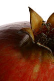 Detail 6 van de granaatappel Royalty-vrije Stock Foto