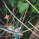 Detail of an abandoned old vintage rusty bicycle with ivy on the background. Royalty Free Stock Image
