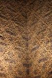 Detail, Alhambra, Granada, Spanje Stock Foto's