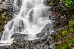 Detail of Amicalola Falls Royalty Free Stock Photo