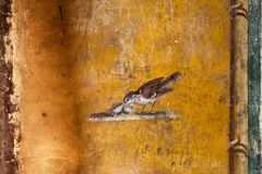 Detail of ancient fresco of a bird in a house in Pompeii. Pompeii was destroyed by the volcanic eruption of Vesuvius in 79 BC royalty free stock photos