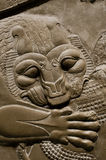 Detail of an ancient Persian relief showing a lion's head Royalty Free Stock Photography