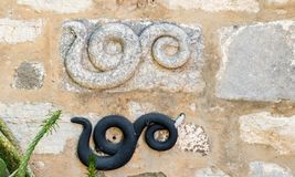 Detail of an ancient Roman marble snake engraving. In Bodrum Castle, Turkey stock images