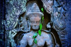 Detail of ancient statue carving Apsara dancer in Cambodia with green leaves. royalty free stock photos