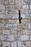 Detail of Ancient Stone Block Walls, Dubrovnik, Croatia. Detail of ancient massive stone block walls, with defensive arrow slit or embrasure, medieval Dubrovnik royalty free stock photo