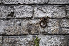Detail of an ancient wall with an iron ring Stock Photos