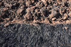 Ash of straw and soil lump in rice field before plant rice. Detail ash of straw and soil lump in rice field before plant rice royalty free stock photo