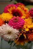 Detail of autumn bouquet. Glowing pink, gold, red and orange dominate this informal bouquet of fall-flowering blooms. Mums, gaillardia, marigold and zinnias Royalty Free Stock Image
