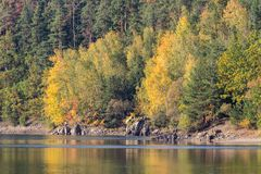 Detail of autumn coloful trees with water, Czech landscape.  stock photos