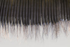 Detail of Baleen. Whalebone is a filter-feeder system inside the mouths of baleen whales royalty free stock photography