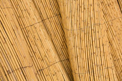 Detail of bamboo fence background Stock Photography