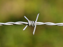 Detail barbed wire. Close up of barbed wire with green background Royalty Free Stock Photos