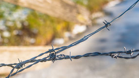 Detail of a barbed wire fence Royalty Free Stock Photo