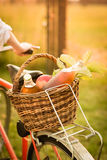Detail of the basket with fresh food Royalty Free Stock Images