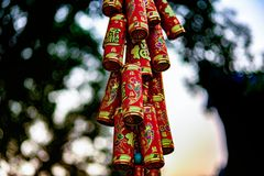 Chinese Hanging Ornaments for the New Year royalty free stock images