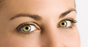 Detail of beautiful green eyes on a young girl Stock Photo