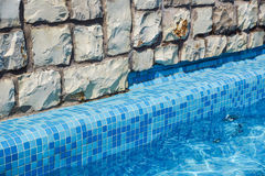 Detail of beautiful swimming pool edge Royalty Free Stock Photos