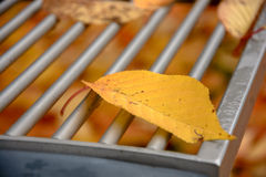 Detail of bench with leaves Stock Photography
