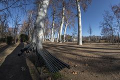Detail of a bench of the park of La Isla in Aranjuez. Madrid, Spain. Fish eye Stock Photo