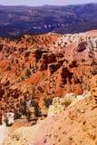 Detail, Berggipfel und Unglücksboten Lizenzfreie Stockbilder
