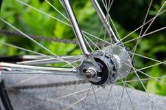 Detail of bicycle wheel Stock Image