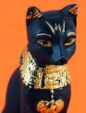 Detail of black egyptian cat. On orange background Stock Photography