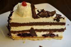 Detail of a black forest cake Stock Images