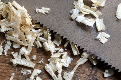 Detail of the blade of a saw toothed and sawdust chippings. In Workbench stock photo