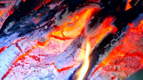 Detail of blue fire of burning hardwood. Burning woods in shiver hot air. Small flames of distilled gas dancing and fluorescing stock video footage