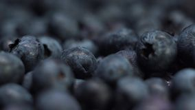 Detail of Blueberries. Macro trucking shot. 4K resolution side view. Extreme close up. Detail of Blueberries. Macro trucking shot. 4K resolution side view stock video footage