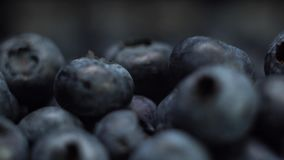 Detail of Blueberries. Macro trucking shot. 4K resolution side view. Extreme close up. Detail of Blueberries. Macro trucking shot. 4K resolution side view stock video